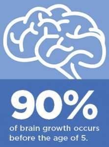 early childhood development brain science